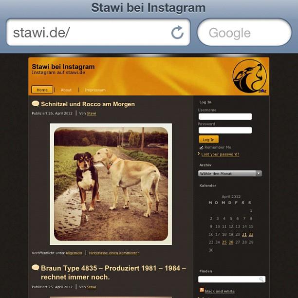 www.stawi.de im neuen Gewand