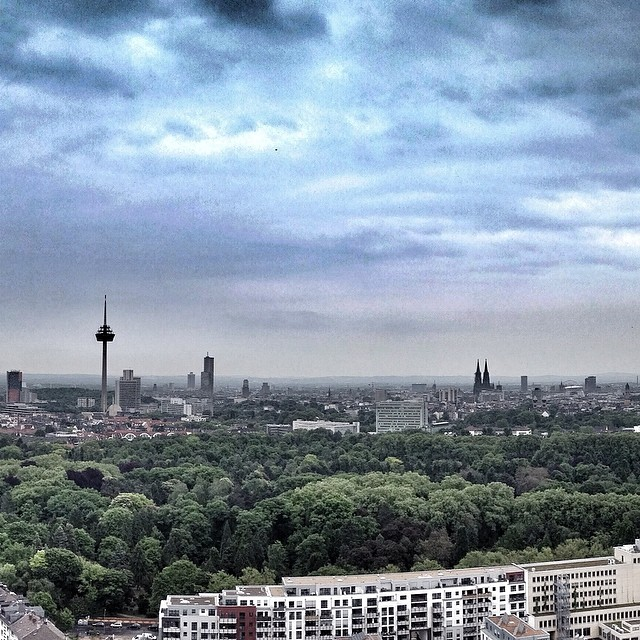 Over the roofs of Cologne