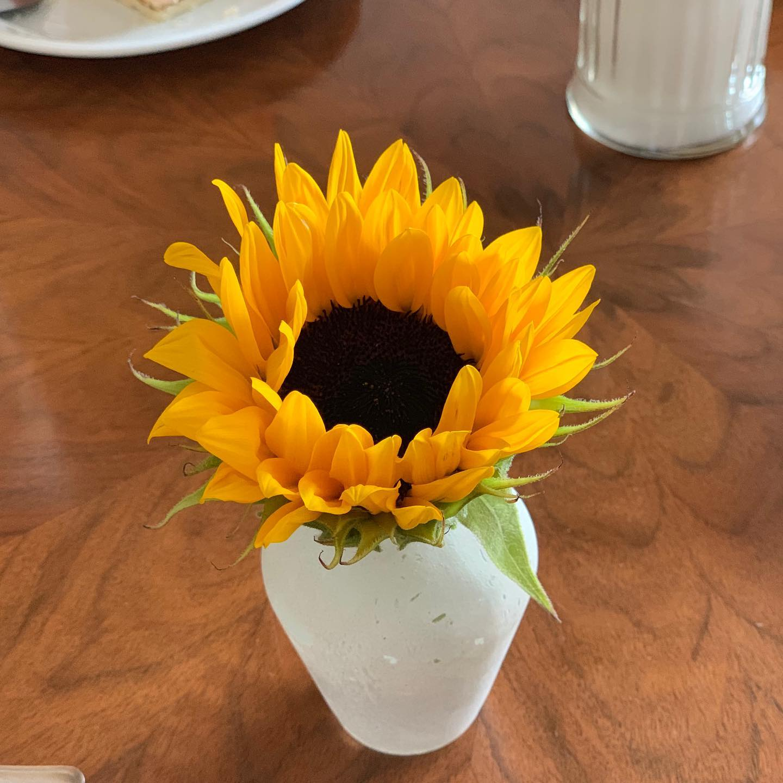 Coffee with Sunflower