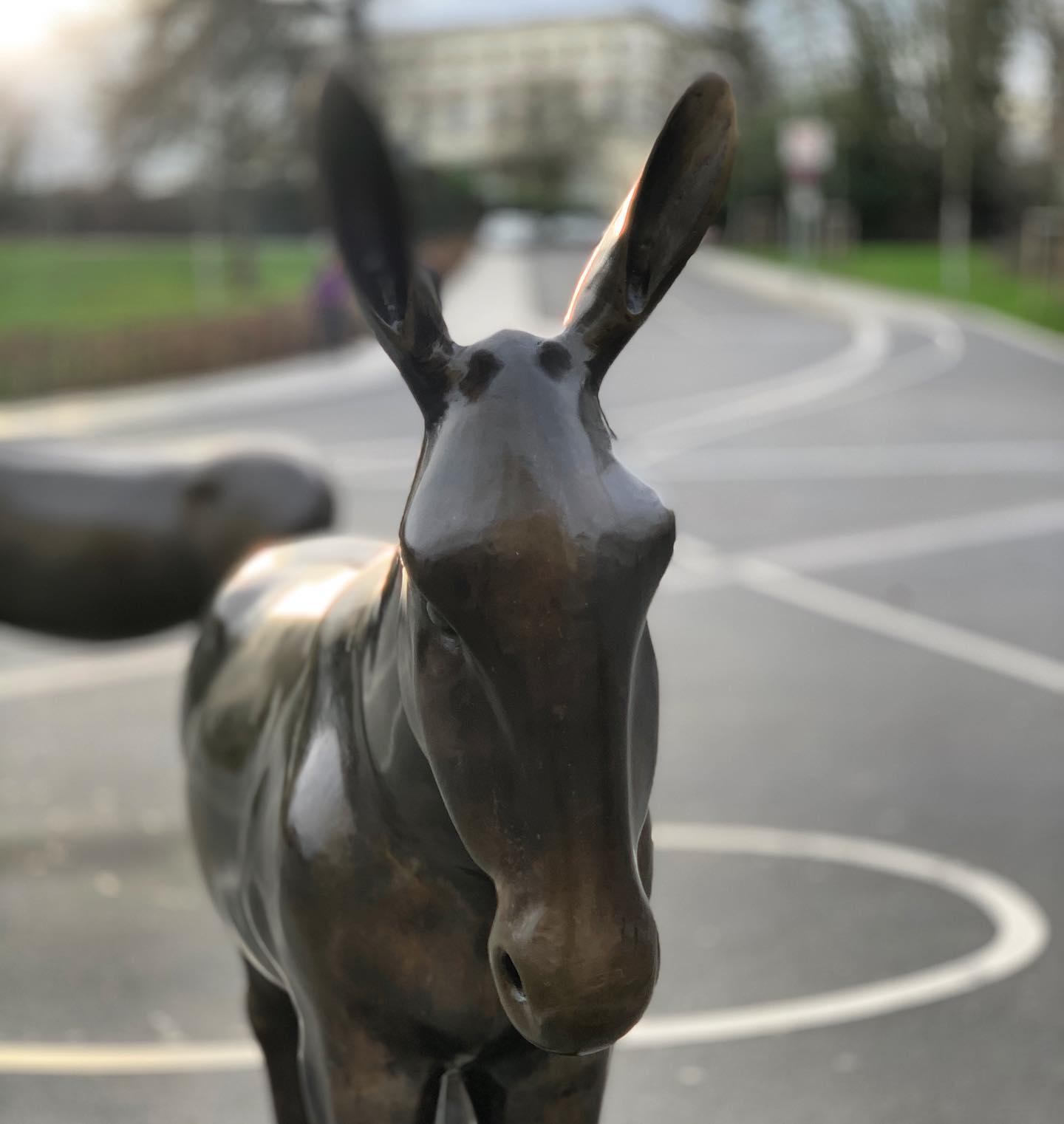 Ein Esel von sieben
