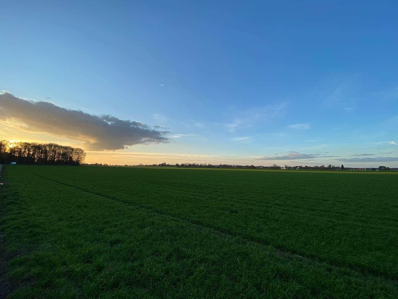 Evening round