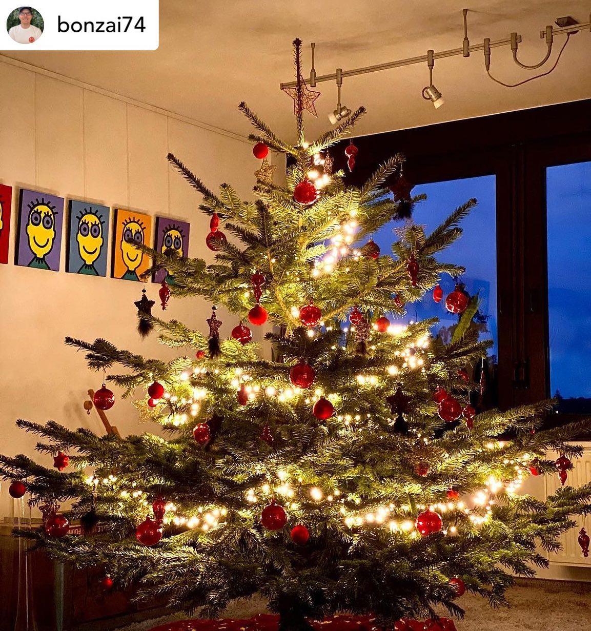 Unser Corona-Schlanker-Pummel-Weihnachtsbaum mit Dekoration!