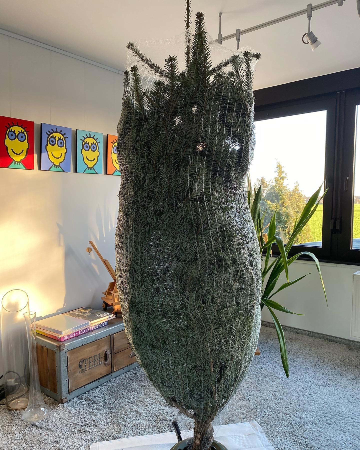 Weihnachten 🧑 ist im Anmarsch, wir haben mal einen schlanken Baum ins Wohnzimmer gestellt.