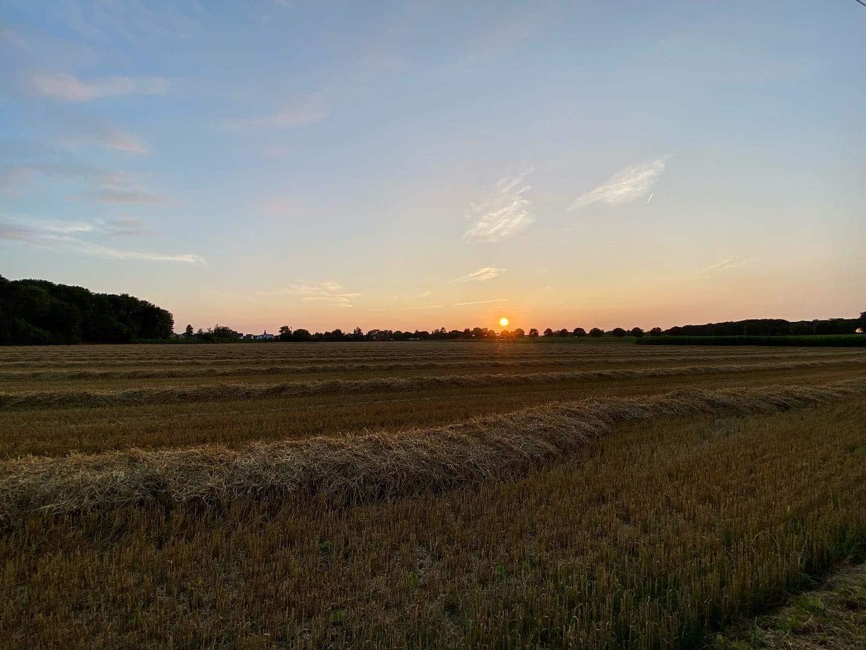 Sunset round